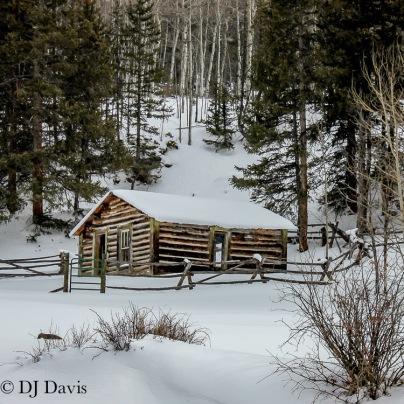 B Cabin
